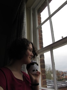 window with panda